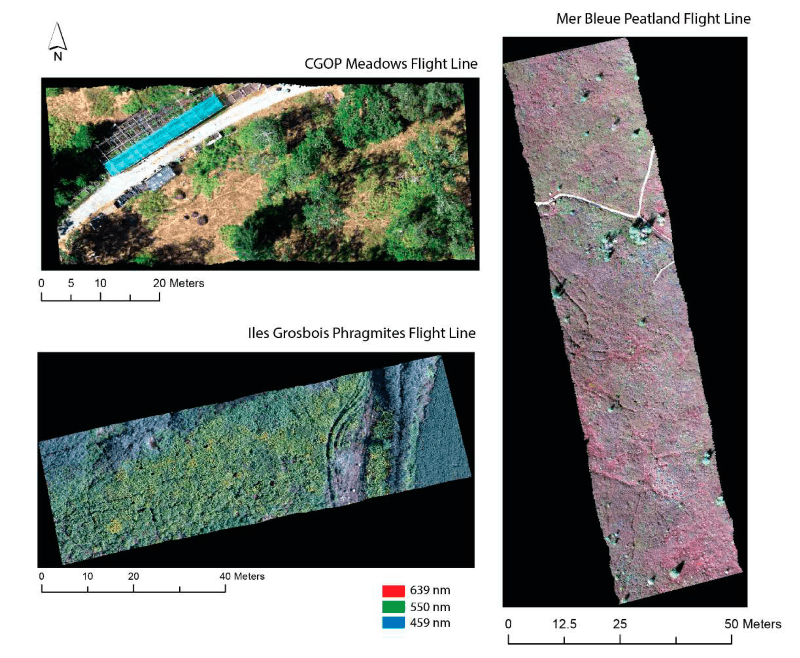 geocorrected hyperspectral images