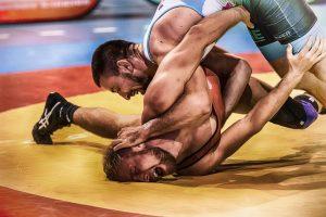 https://pixabay.com/photos/wrestle-wrestler-sport-martial-arts-3724565/